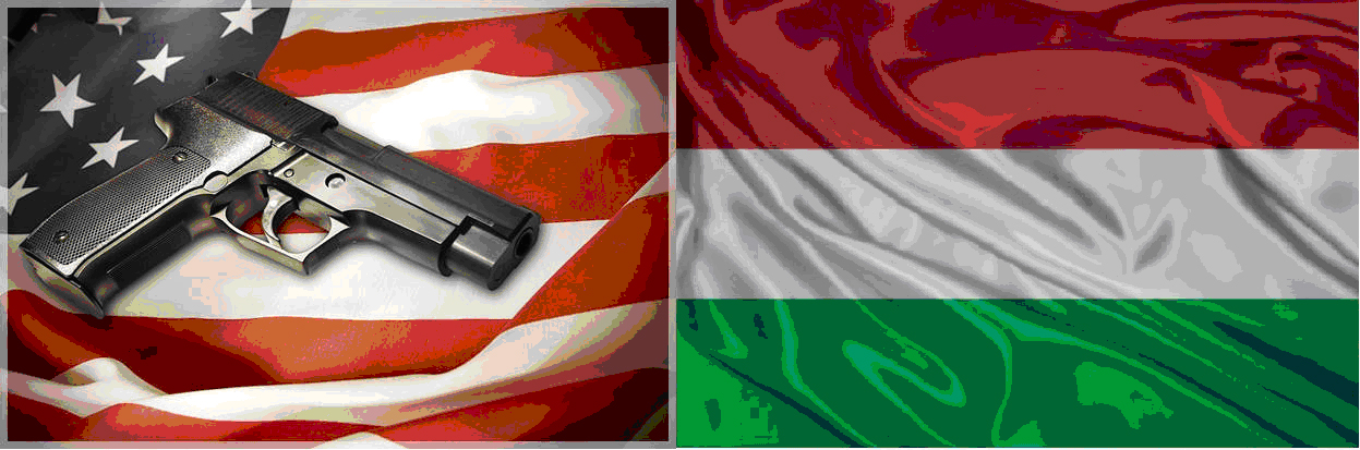 America vs Hungary Final